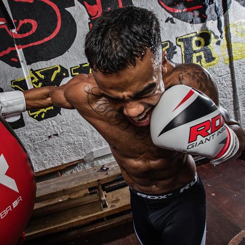 F10 boxing glove 1
