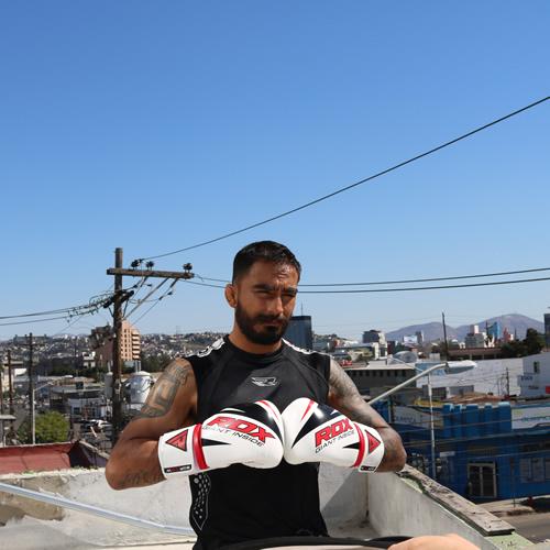 F10 boxing glove 2