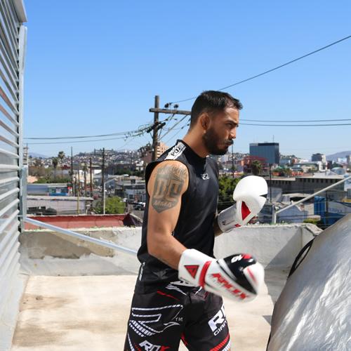 F10 boxing glove 3
