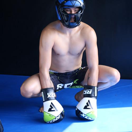 F11 Boxing Glove 1