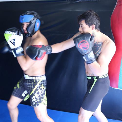 F11 Boxing Glove 2