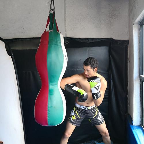 F11 Boxing Glove 3