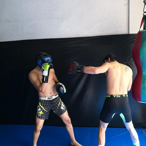 F11 Boxing Glove 4