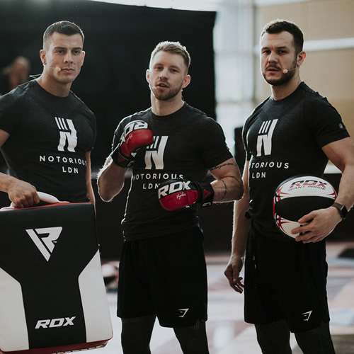 T6 MMA GLOVE 3