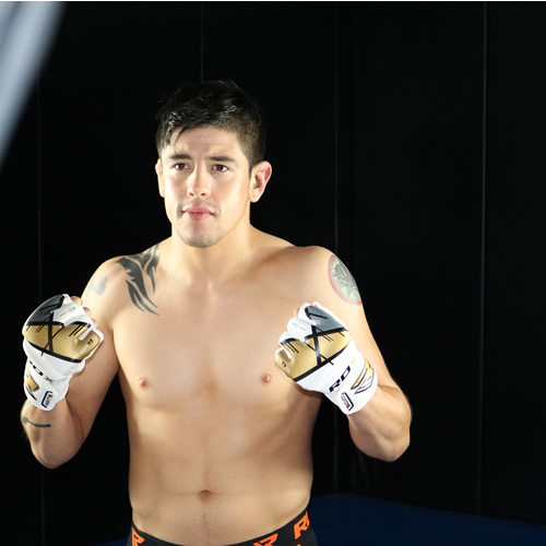 T7 MMA GLOVE 2