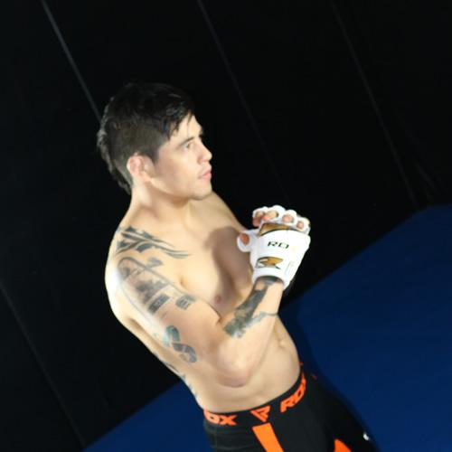 T7 MMA GLOVE 3